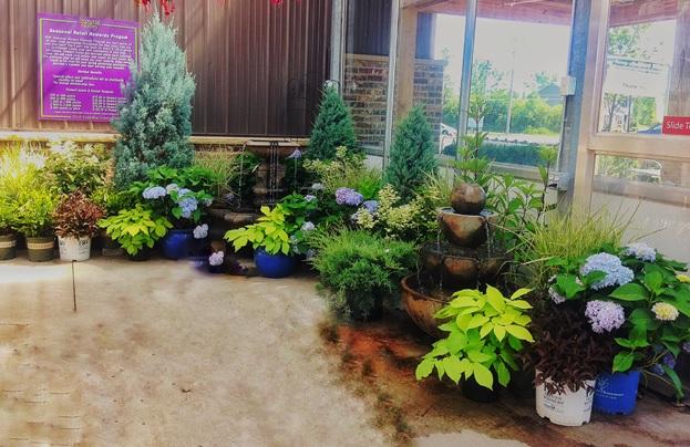 Garden Center | Seasonal Nursery